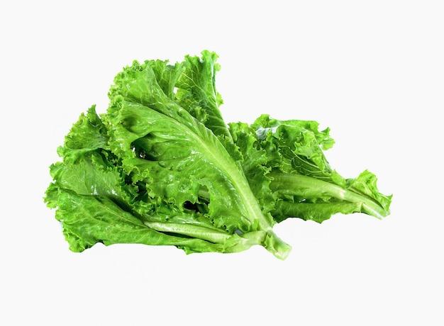 Salatblatt auf weißem grund