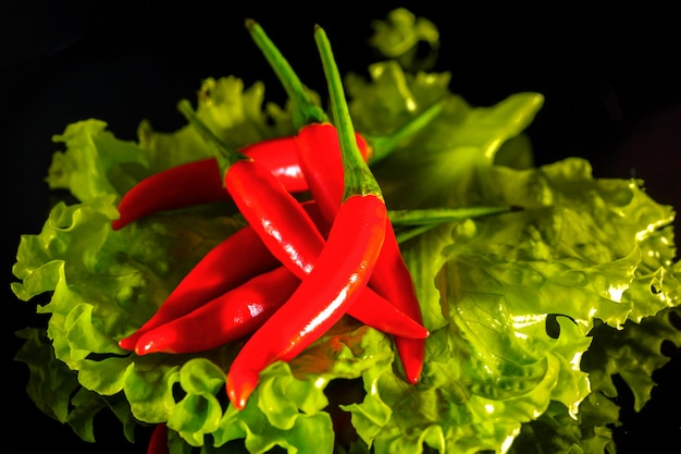 Salatblatt mit rotem pfeffer auf schwarzem hintergrund