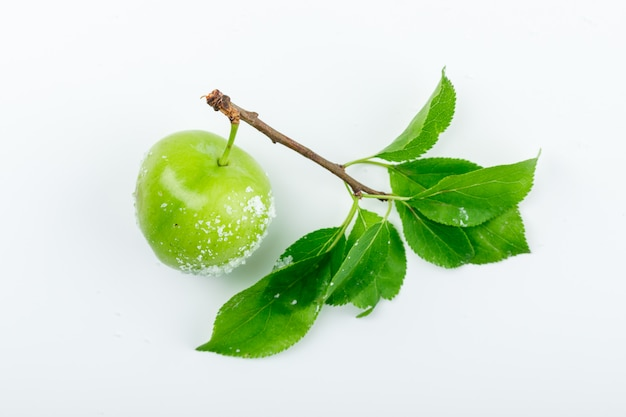 Salzige grüne pflaume mit grünen blättern flach lag auf einer weißen wand
