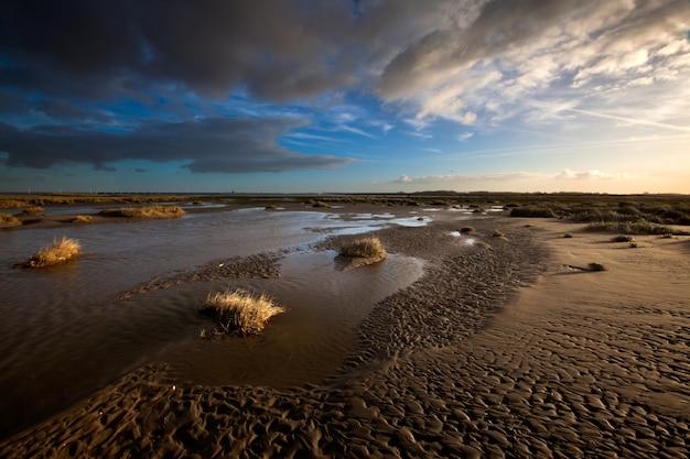 Salzwiesen und flache schlämme unter dem bewölkten himmel in kwade hoek, niederlande