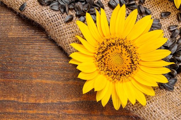 Samen mit leuchtend gelben sonnenblumen nahaufnahme auf sackleinen auf braunem holzhintergrund. ansicht von oben