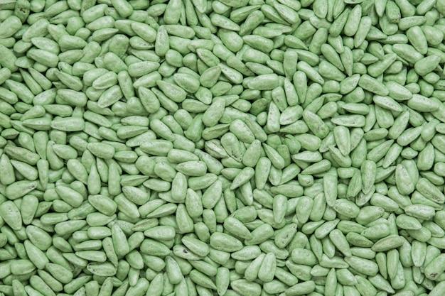 Samen sonnenblumenkerne. lackierte agro-farbe zum sortieren und etikettieren