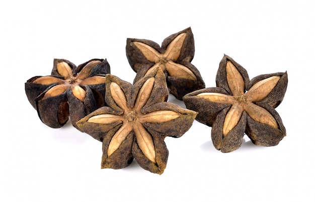 Samen von sacha inchi, sacha mani oder star inka erbsen auf weiß