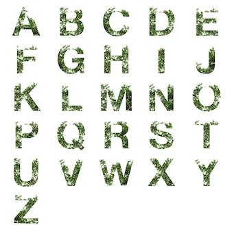 Sammlung der doppelbelichtung des az-alphabetbuchstaben mit den dunkelgrünen blättern lokalisiert auf weiß