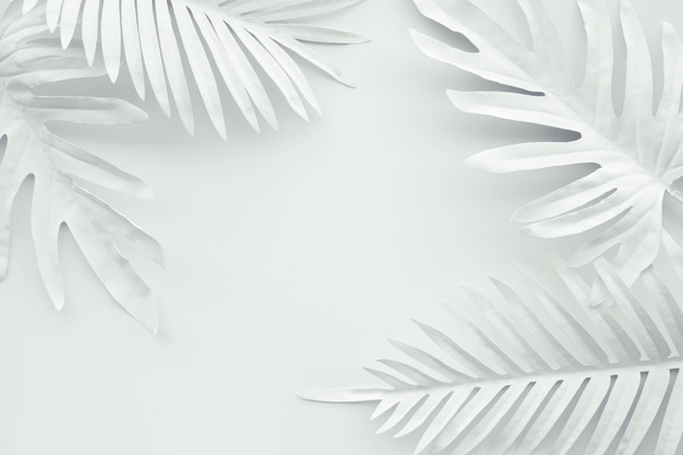 Sammlung tropischer blätter in weißer farbe