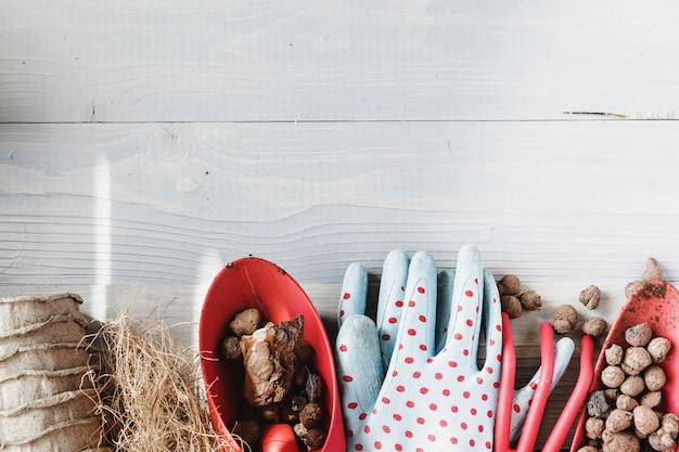 Sammlung verschiedene zimmerpflanzen, gartenhandschuhe, blumenerde und kelle auf weißem hölzernem. blumenerde zimmerpflanzen hintergrund.