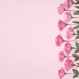 Sammlung von frischen blüten