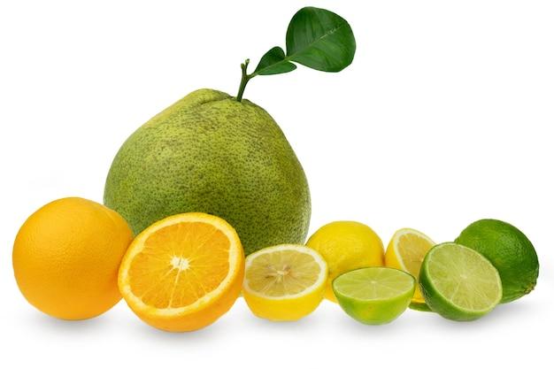Sammlung von pampelmusen-limetten-zitrone und orangenfrucht auf weiß