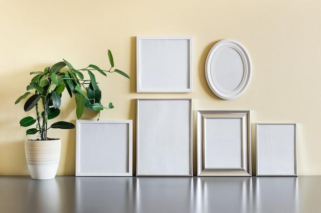 Sammlung von sechs leeren rahmen, die auf reflektierender oberfläche mit topfpflanze stehen.