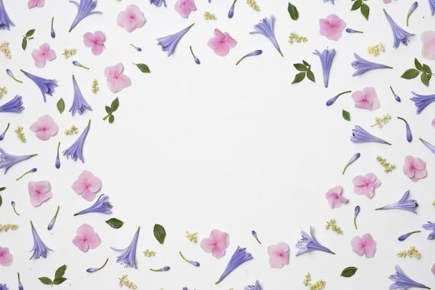 Sammlung wundervoller violetter blumen und grünes laub