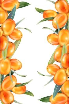 Sanddorn isoliert auf dem weiß. illustration im 3d-stil. das konzept des realistischen bildes von heilpflanzen, kräutern.
