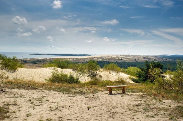 Sanddünen auf der kurischen nehrung nahe der stadt nida. klaipeda, litauen