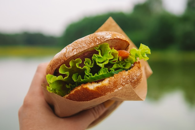 Sandwich mit fisch und salat. essen in der natur.