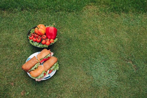 Sandwiche und veggies auf dem gras beschneidungspfad eingeschlossen von zwei platten frischem schönem eco gemüse