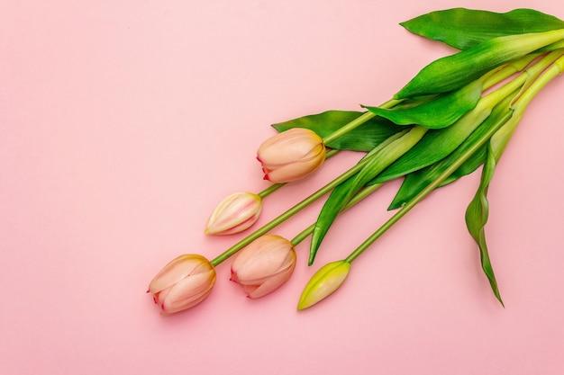 Sanfter strauß tulpen lokalisiert auf hellrosa hintergrund. romantisches konzept des valentinstags oder der hochzeit, kopierraum, flache lage, draufsicht