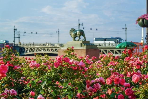Sankt petersburg an einem sonnigen tag. russland.
