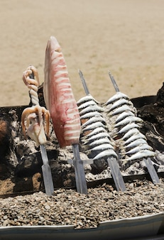 Sardinen und tintenfischspieß sandstrand hintergrund