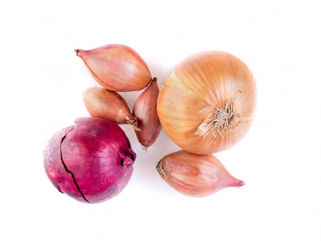 Satz verschiedene zwiebeln - schalotten, rote zwiebel auf weißem hintergrund, birnen, draufsicht