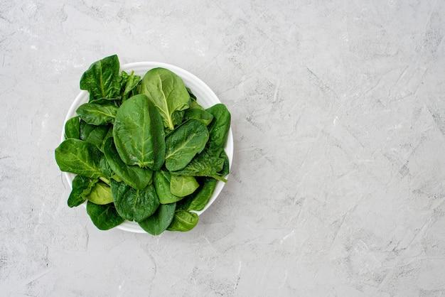 Sauberes lebensmittelkonzept. blätter des frischen organischen spinatgrüns in einem teller auf hellem hintergrund. gesunde entgiftungs-frühling-sommer-diät. veganes rohkost. speicherplatz kopieren.