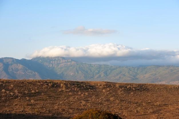 Savannenlandschaft im nationalpark von kenia, afrika