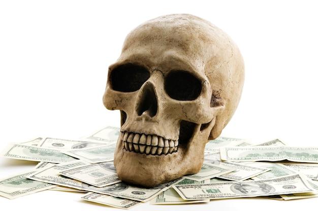 Schädel mit geld auf weißem hintergrund