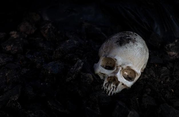 Schädel und knochen graben aus der grube auf dem gruseligen friedhof