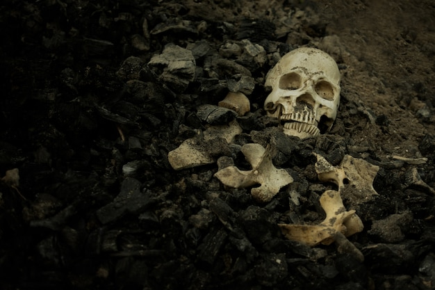 Schädel und knochen gruben sich aus der grube auf dem gruseligen friedhof, in dem schwaches licht herrscht