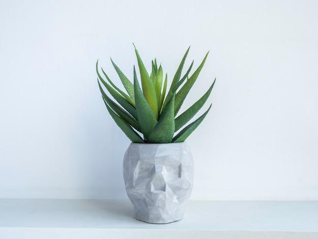 Schädelform beton blumentopf mit grüner sukkulente auf weißem holzregal isoliert auf weißer wand. kleine moderne diy-zementpflanzer trendige dekoration.