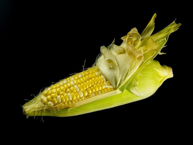 Schälen sie rohen mais auf schwarzem hintergrund