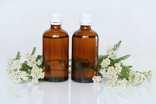 Schafgarbentinktur, schafgarbenöl. schafgarbenöl in zwei braunen glasflaschen und schafgarbenblüten natürliche apotheke
