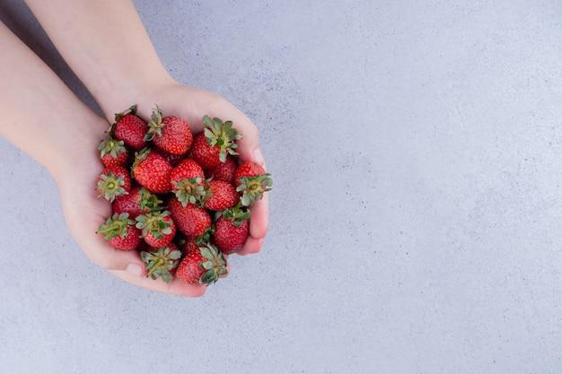 Schalenförmige hände, die einen haufen erdbeeren auf marmorhintergrund halten. foto in hoher qualität