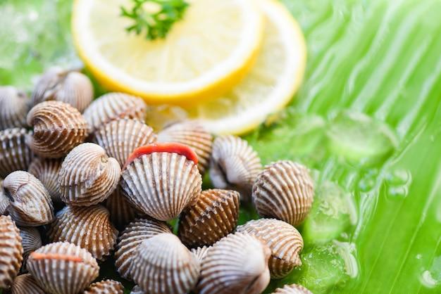 Schalentier-meeresfrüchte-herzmuscheln frisch mit zitrone und eis auf bananenblatt