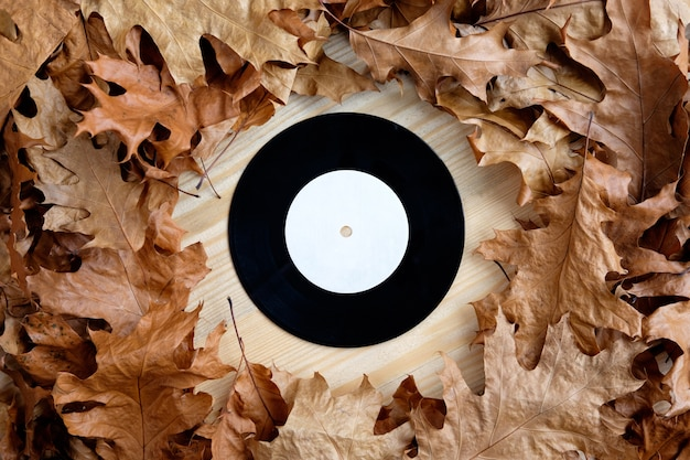 Schallplatte aus vinyl mit trockenen blättern