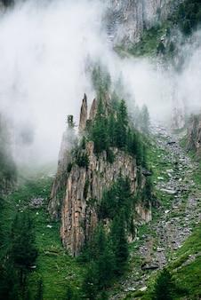 Scharfe steine des felsigen berges mit nadelbäumen im dichten nebel. niedrige wolke nahe hohem felsen mit wald. bunte neblige grüne landschaft mit felsen und bäumen in den wolken. steiler hang mit felsbächen