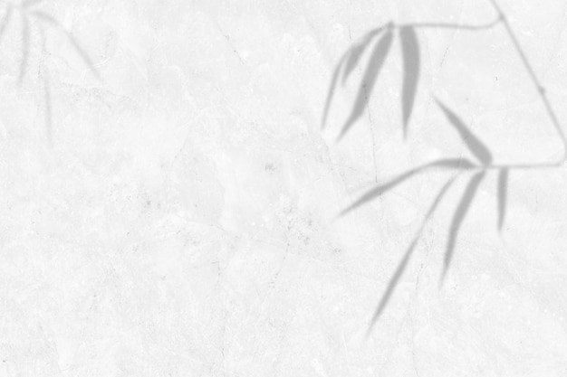 Schatten der blätter bambus auf weißem marmorwand hintergrund. platz kopieren.