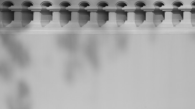 Schatten der niederlassung und des blattes auf einer weißen betonmauer