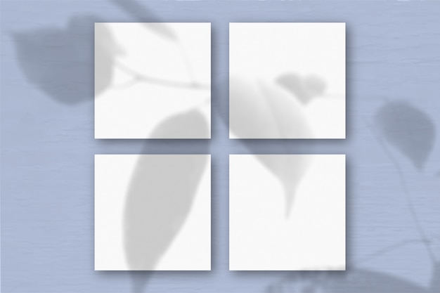 Schatten einer exotischen pflanze auf mehreren horizontalen und vertikalen blättern aus weißem strukturiertem papier