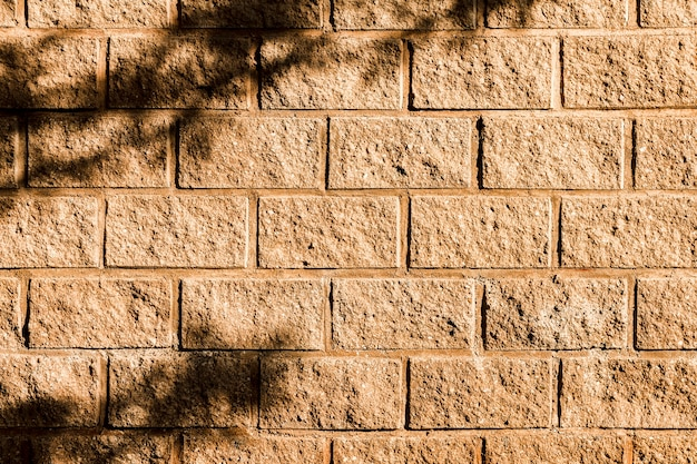 Schatten eines baumes auf der backsteinmauer