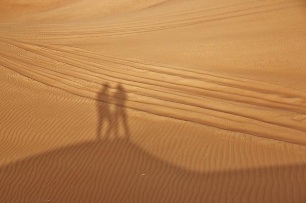 Schatten in der wüste