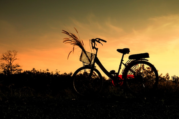 Schattenbild der fahrrad- und grasblume mit blauem himmel in der naturlandschaft, fahrrad auf sonnenuntergang