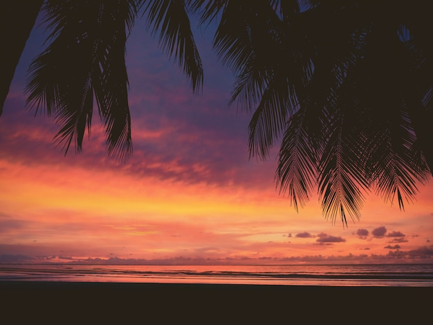 Schattenbild der frau und der palme auf sonnenuntergangstrand