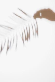 Schattenbild der hand einer person, die palmblatt lokalisiert auf weißem hintergrund hält