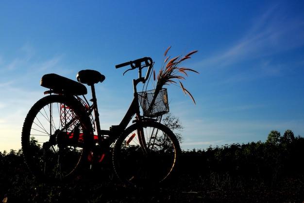 Schattenbild des fahrrades mit blauem himmel