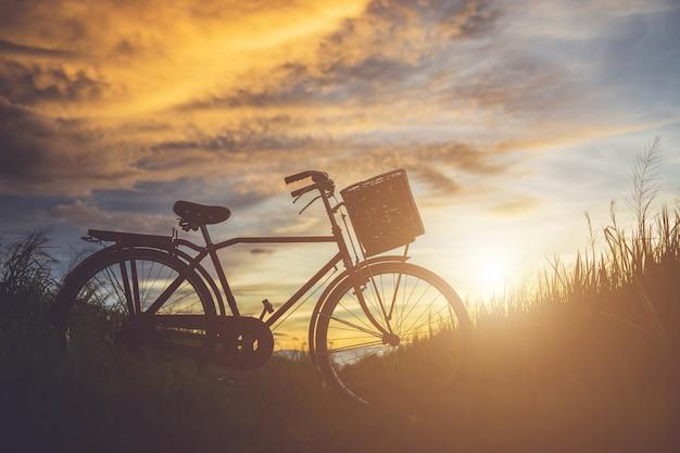 Schattenbild des klassischen fahrrades der japan-art am feld