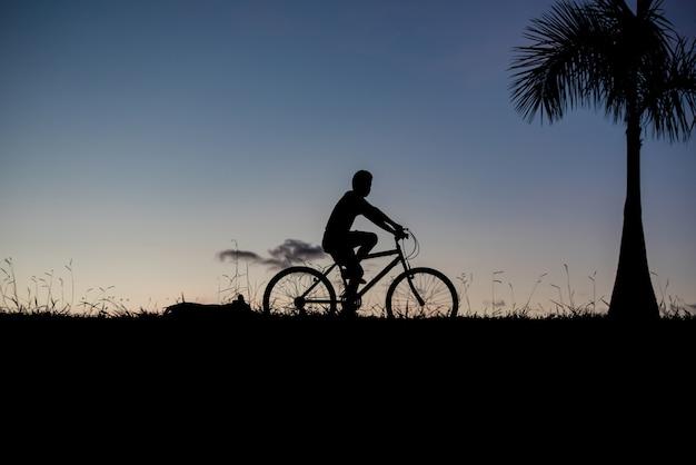 Schattenbild eines jungen, der fahrrad und einen hund fährt