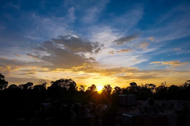 Schattenbild von bäumen und von himmel mit wolken im sonnenuntergang.