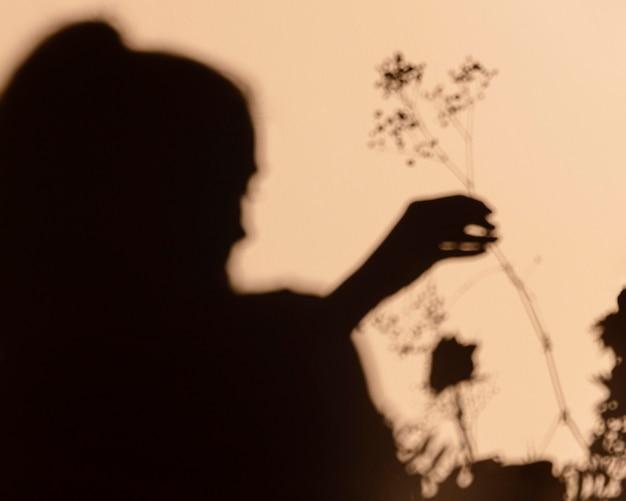 Schattenbilder der frau, die eine blume hält