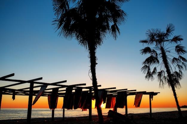 Schattenbilder von palmen durch das meer auf einem sonnenuntergang. strand