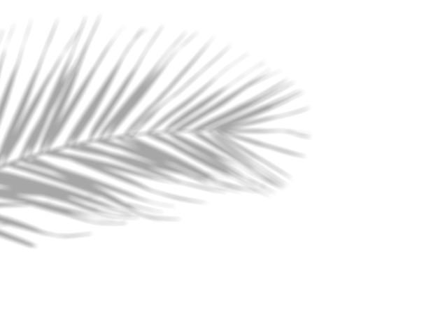 Schattenüberlagerungseffekt auf weißer wand