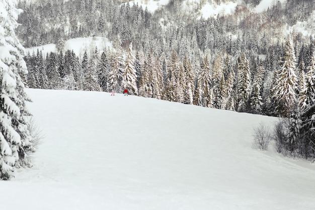 Schauen sie von oben an leuten in den skianzügen, die auf geschneitem hügel im gebirgswald stehen